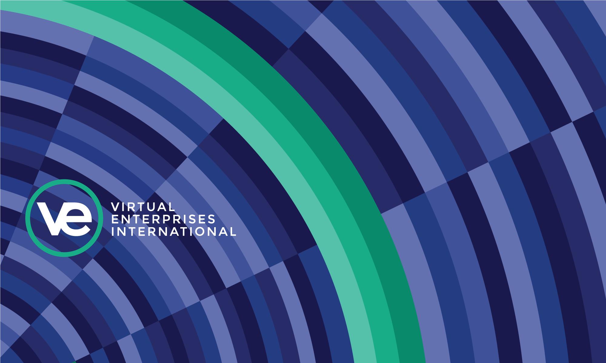 2016-17 VE Annual Report